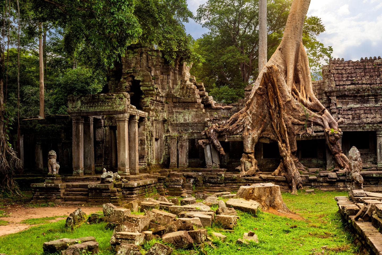 Cambogia Angkor Tempio Ta Prohm