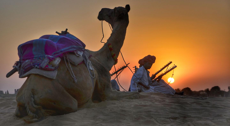 India Rajasthan cammelli nel deserto al tramonto