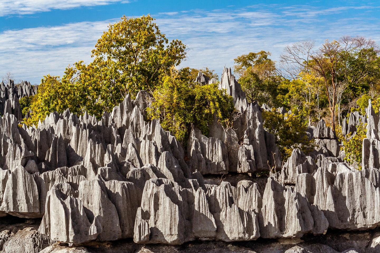 Tsingy de Bemaraha Madagascar