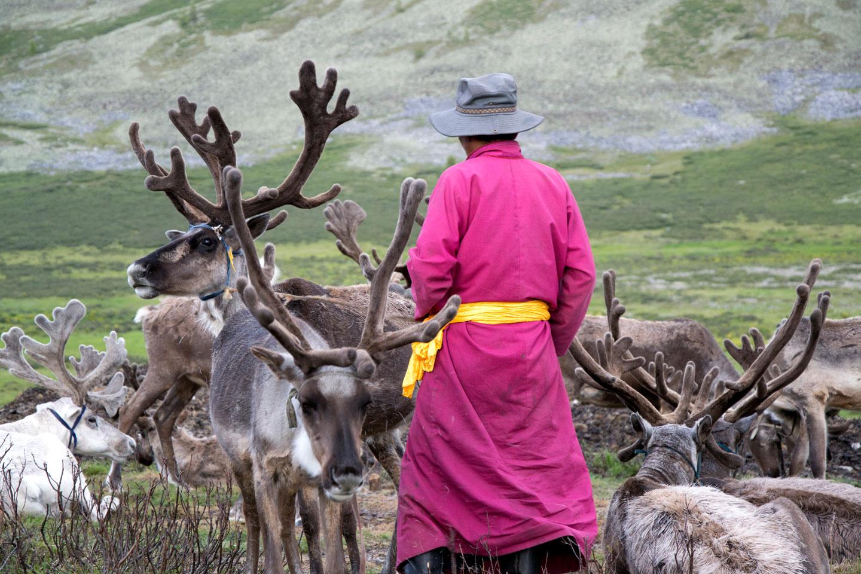 Mongolia Uomini Renna