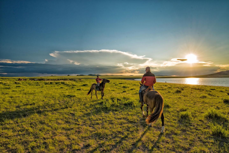 Mongolia steppa cavalli