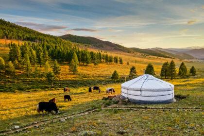 Mongolia Yurta Gher