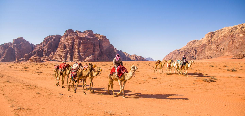 Wadi Rum Carovane Cammelli, Deserto Giordania