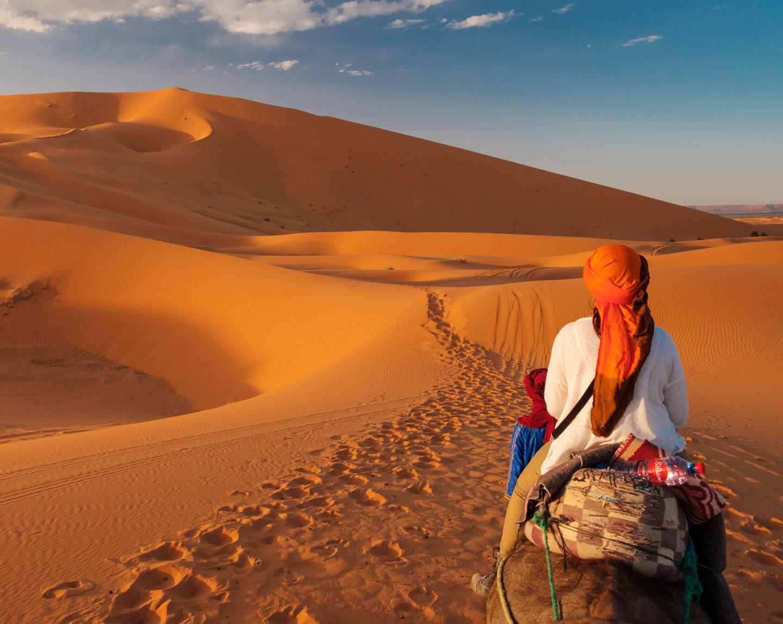 Marocco Erg Chebbi Merzouga cammello