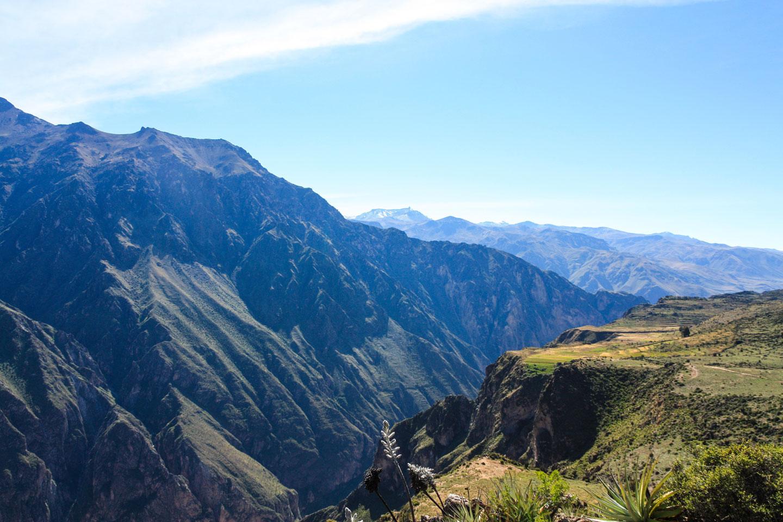 Peru Canyon del Colca