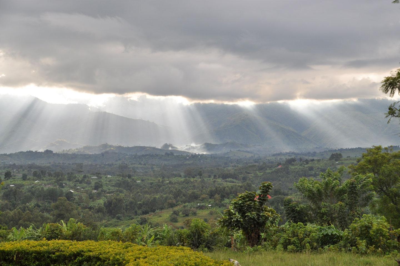 Uganda Rwenzori Montagne