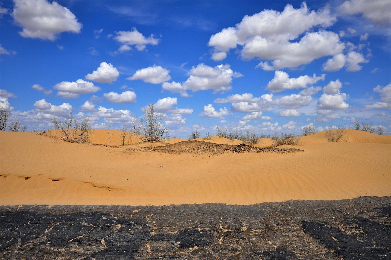 Uzbekistan deserto Kyzylkum