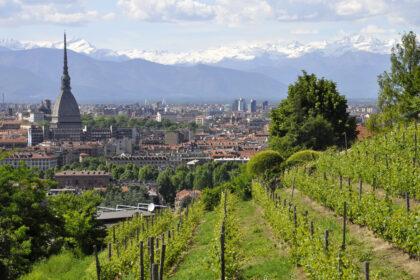 Torino città e Mole Antonelliana