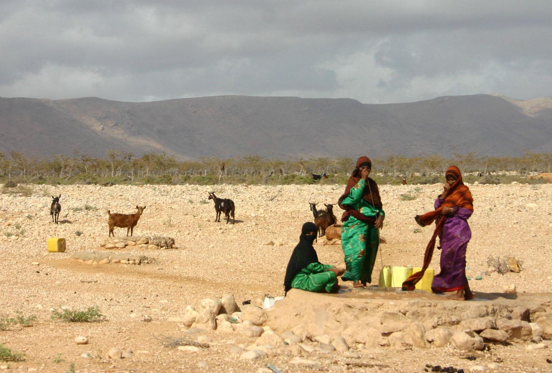 Isola di Socotra Popolazione