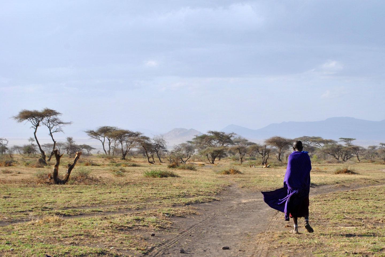 Tanzania Popolo Masai